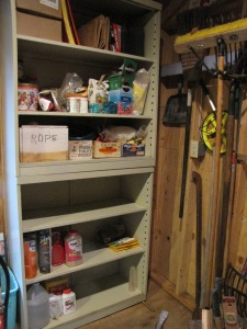 Office shelves into shed