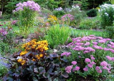 Photo_Jif_September garden (2)