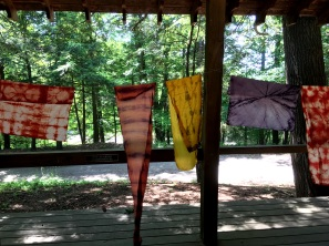 natural dyeing class_Jif_2018-06-16 14.33.30 HDR