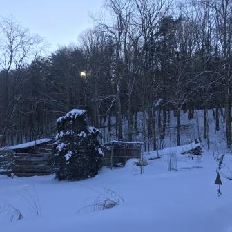 Snow_Jif_2020